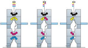 секции башенного построения Manugraph Cityline (4+4, 4+2, 4+1)